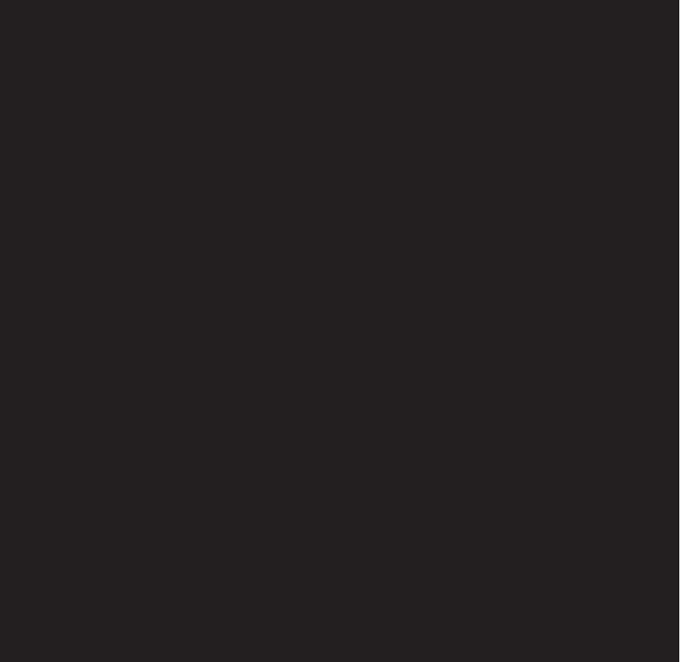 papalota-negra-logo